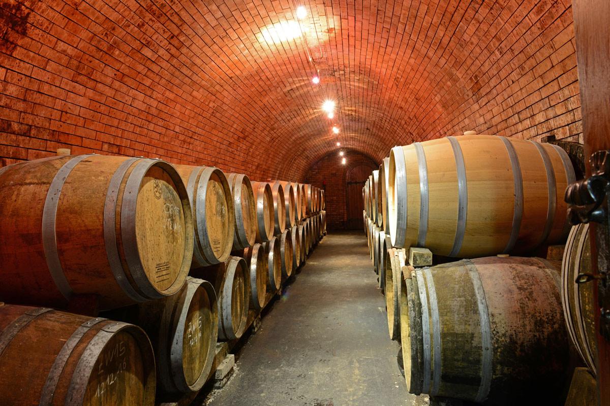 Naše nová vinařství